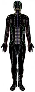 Meridian body chart